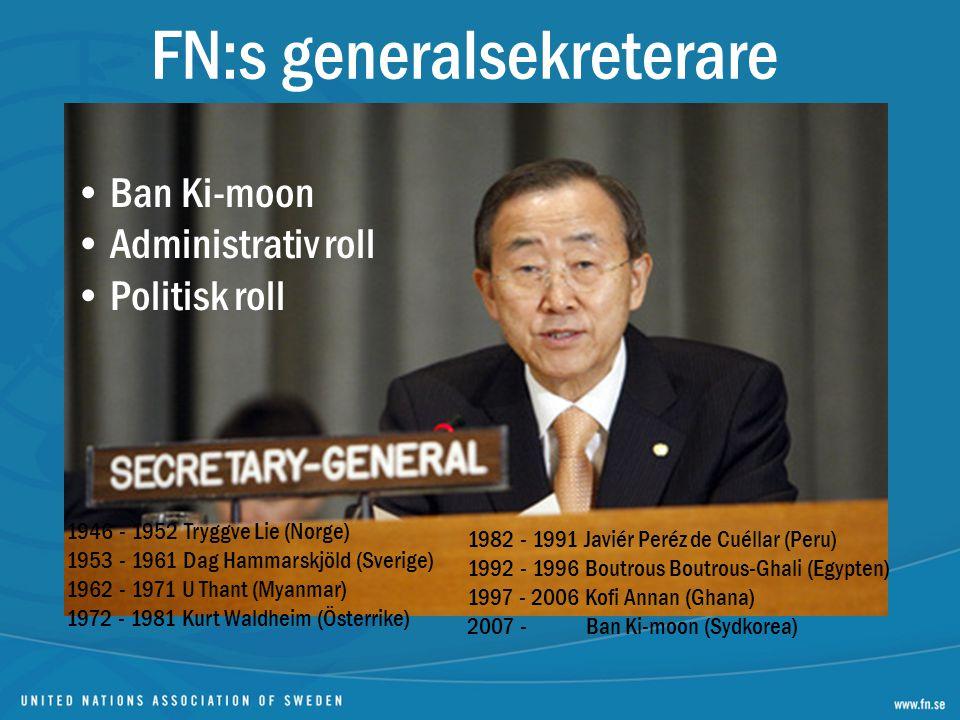 FN:s generalsekreterare