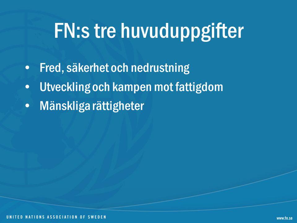 FN:s tre huvuduppgifter