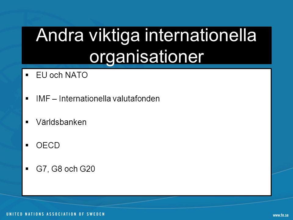 Andra viktiga internationella organisationer