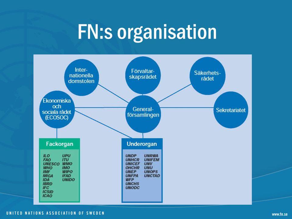 FN:s organisation Dela ut organisationsskiss