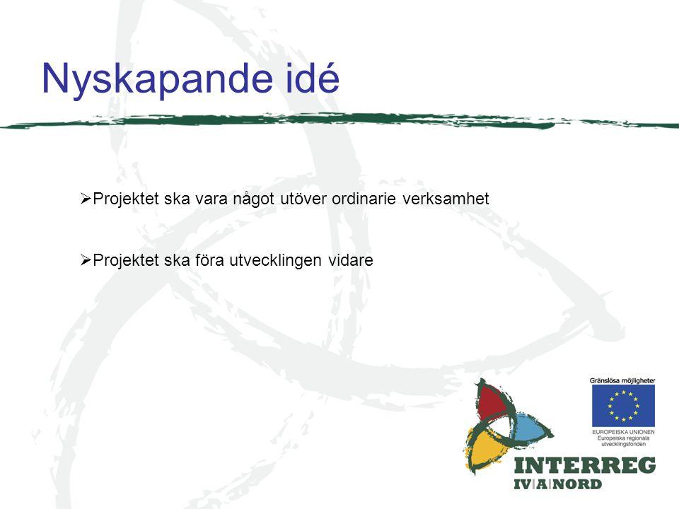 Nyskapande idé Projektet ska vara något utöver ordinarie verksamhet