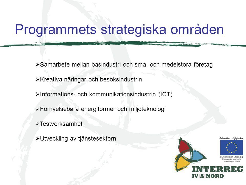 Programmets strategiska områden