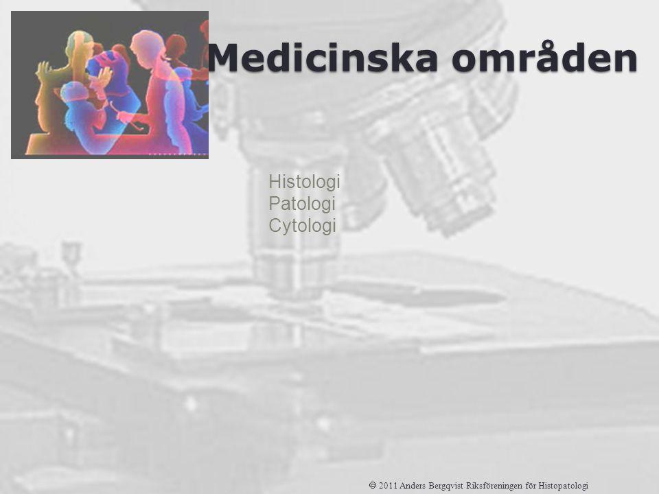 Histologi Patologi Cytologi