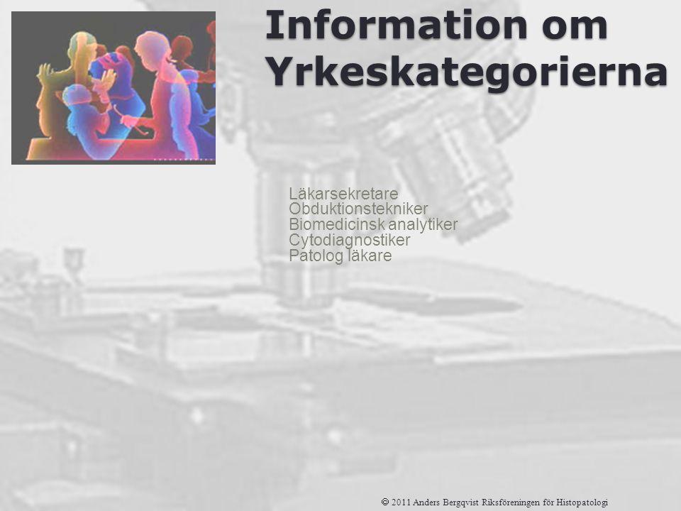 Information om Yrkeskategorierna