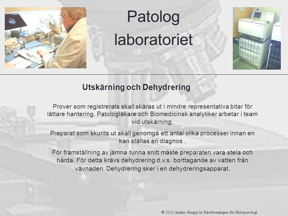 Patolog laboratoriet Utskärning och Dehydrering