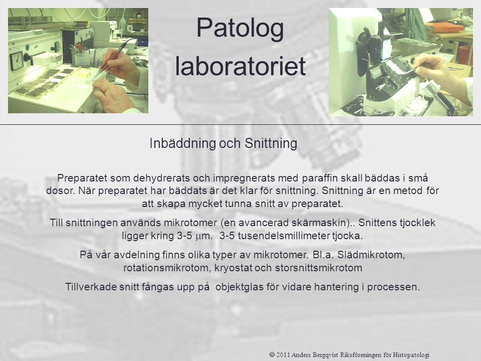 Patolog laboratoriet Inbäddning och Snittning