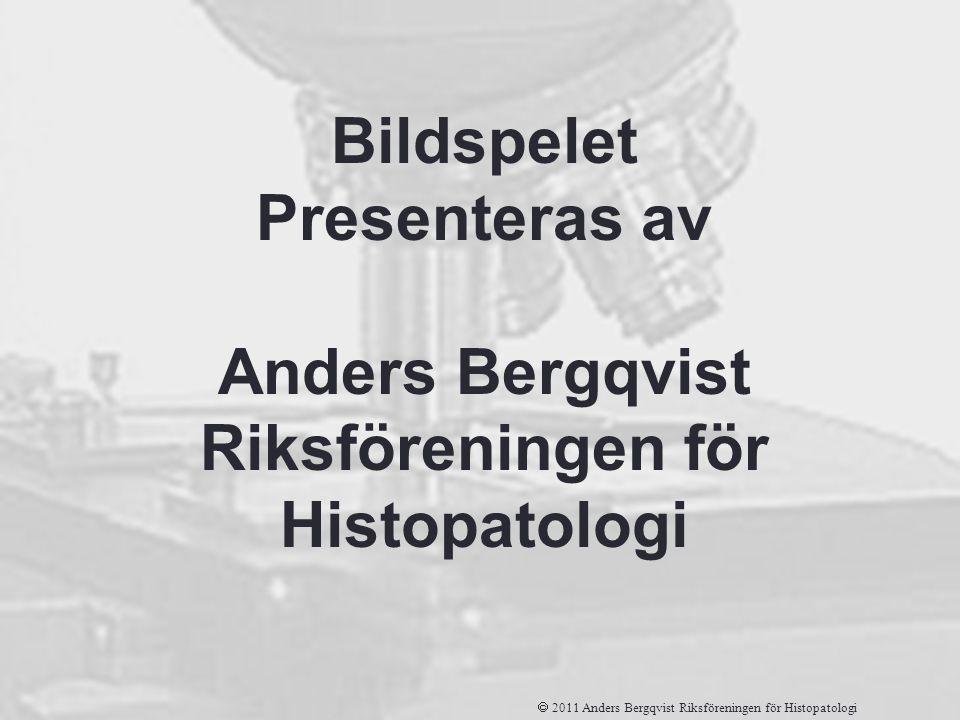 Riksföreningen för Histopatologi