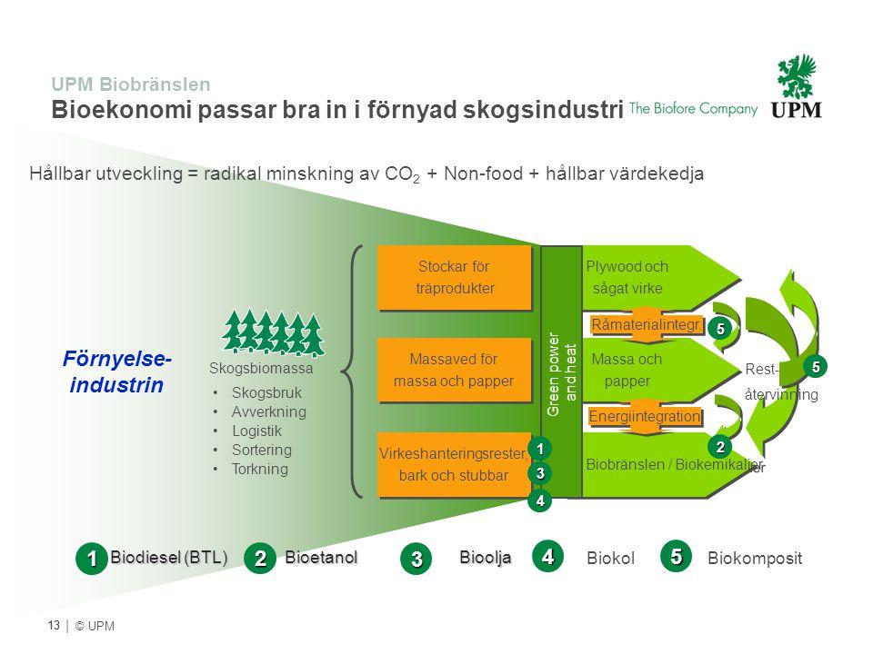 UPM Biobränslen Bioekonomi passar bra in i förnyad skogsindustri
