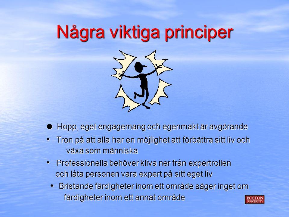 Några viktiga principer