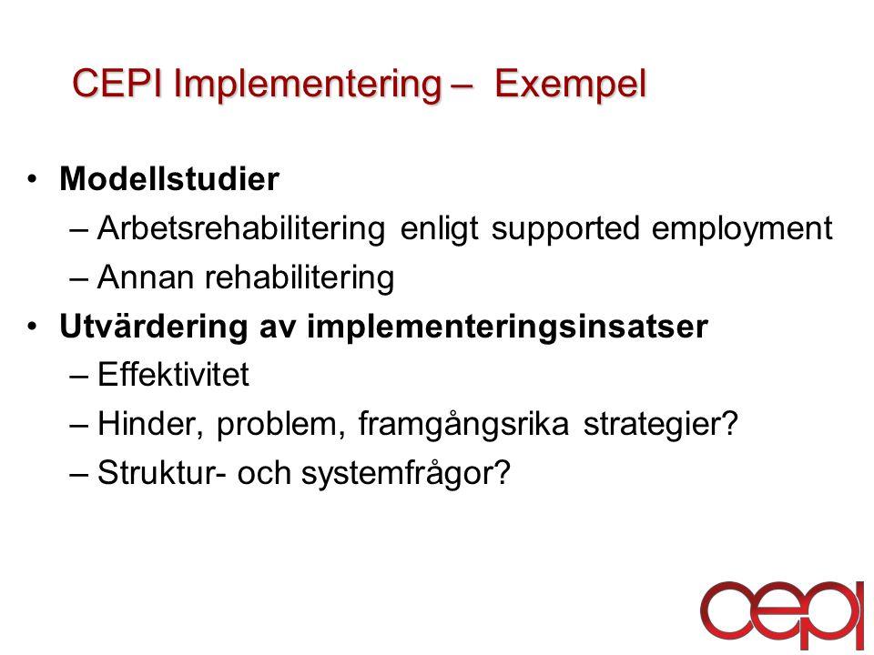 CEPI Implementering – Exempel
