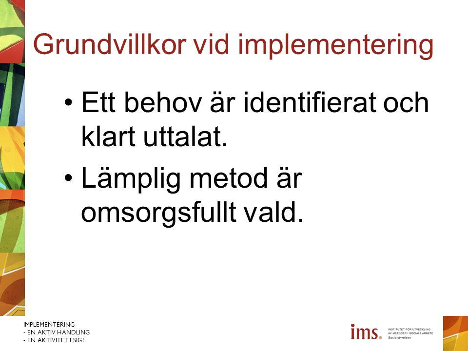 Grundvillkor vid implementering