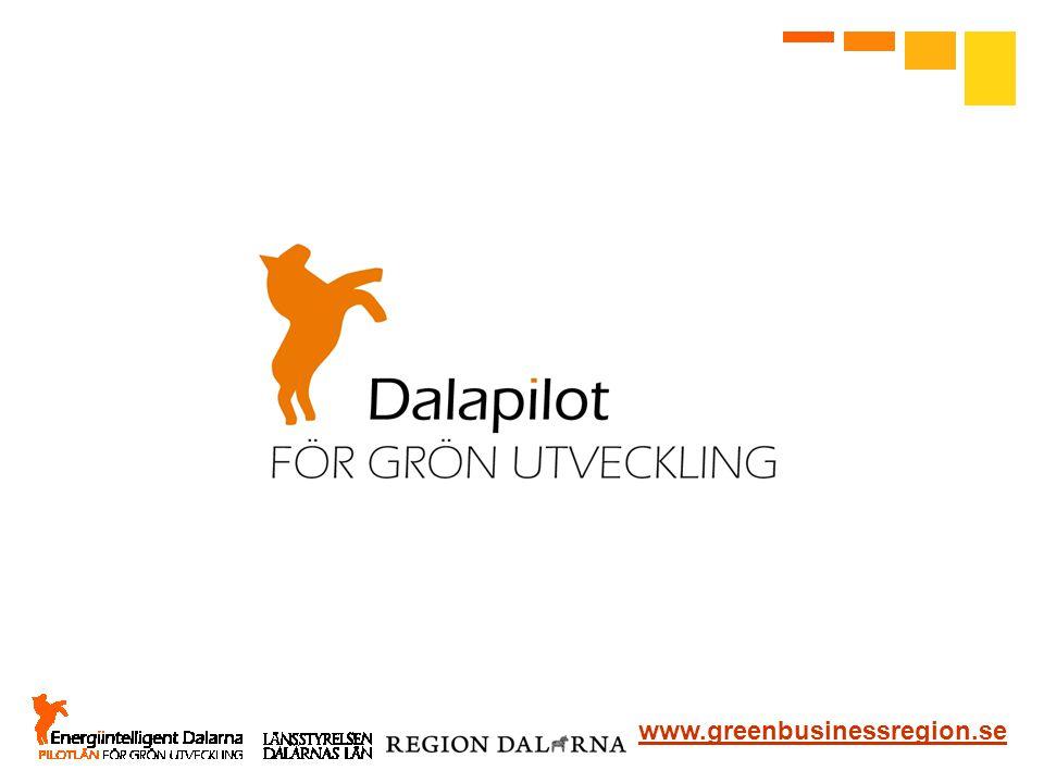 Vi lyfter fram positiva exempel i olika branscher och utser dem till Dalapiloter