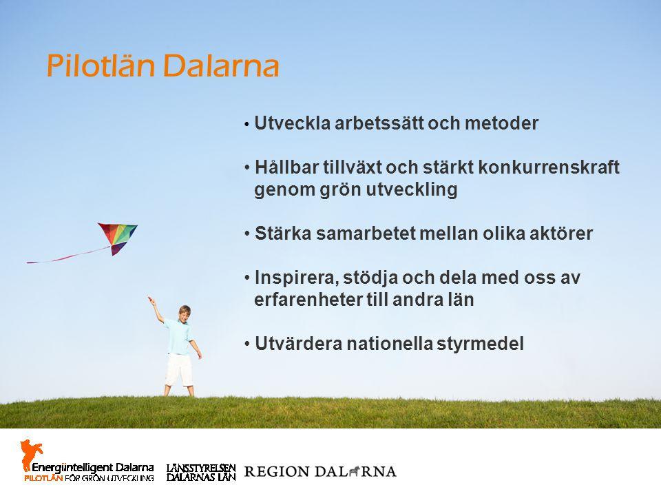 Pilotlän Dalarna Hållbar tillväxt och stärkt konkurrenskraft