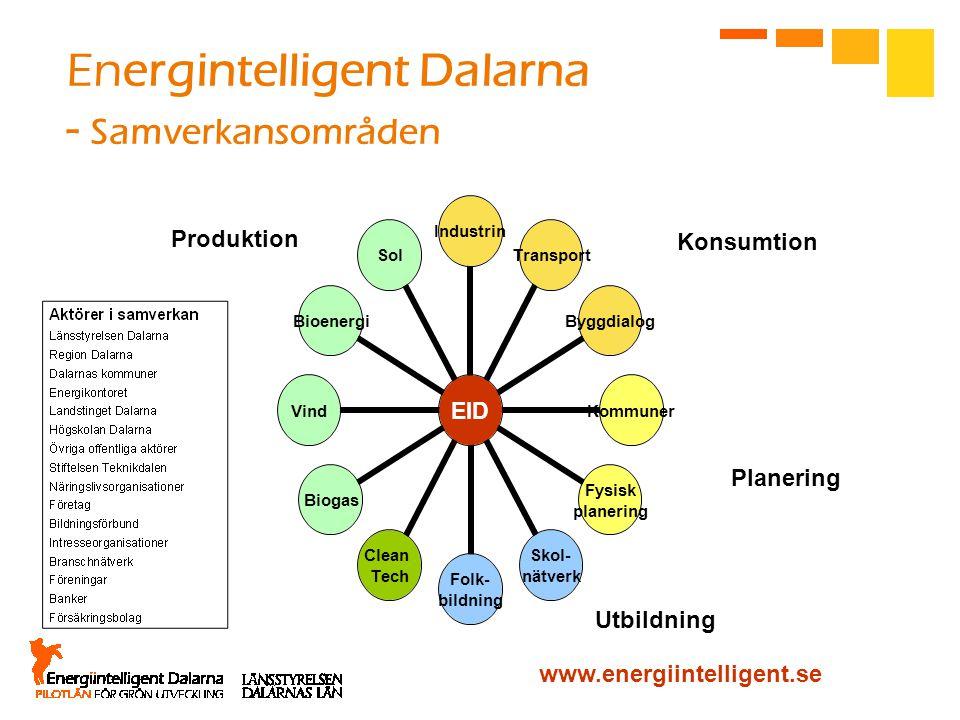Energintelligent Dalarna - Samverkansområden