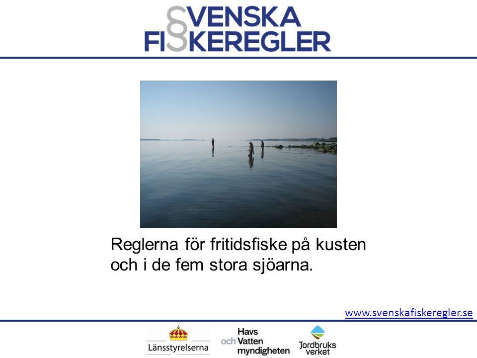 Reglerna för fritidsfiske på kusten och i de fem stora sjöarna.
