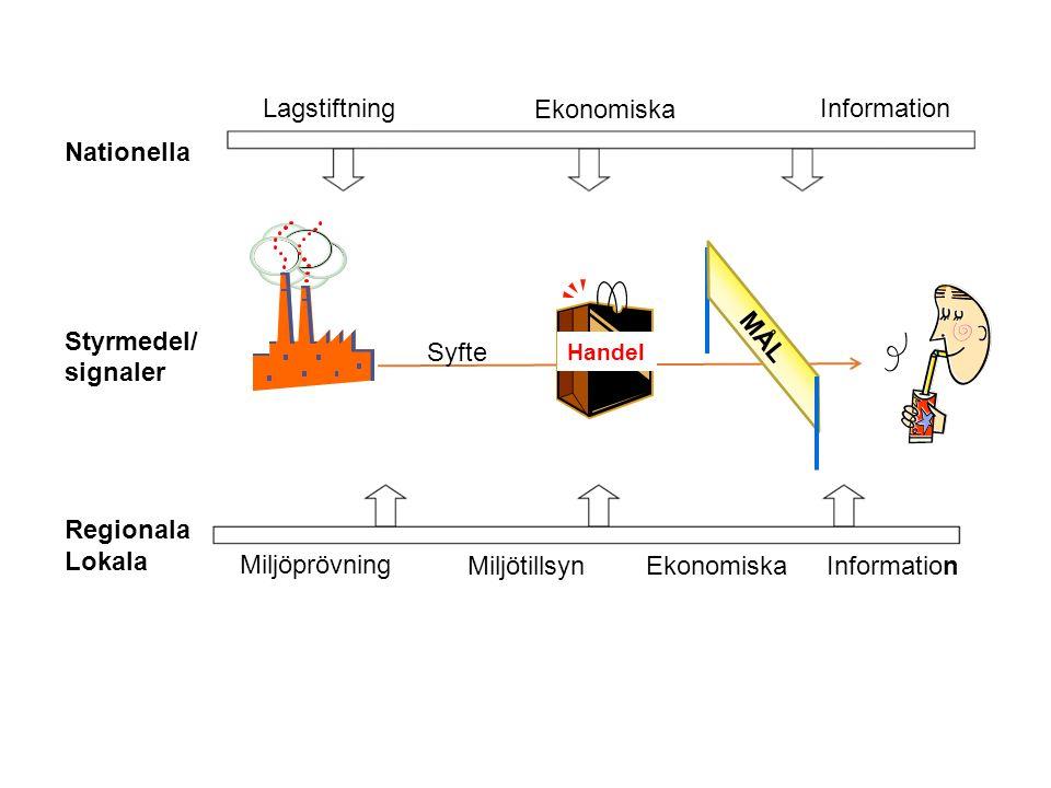 Lagstiftning Ekonomiska Information Nationella Styrmedel/ signaler