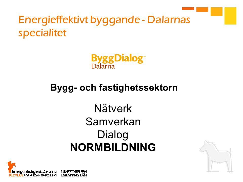Energieffektivt byggande - Dalarnas specialitet