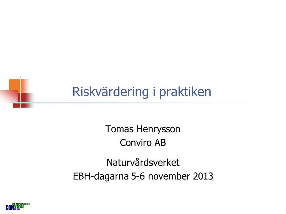 Riskvärdering i praktiken