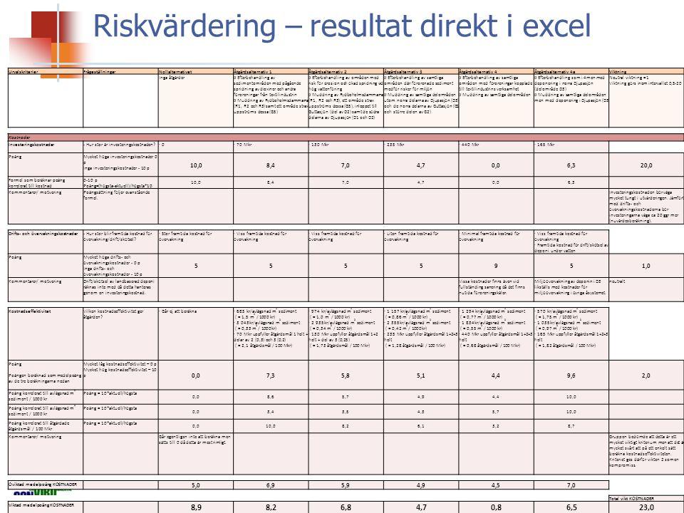 Riskvärdering – resultat direkt i excel