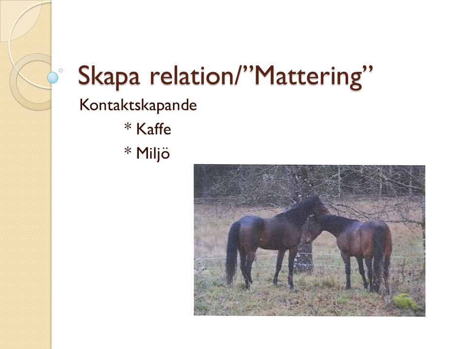 Skapa relation/ Mattering