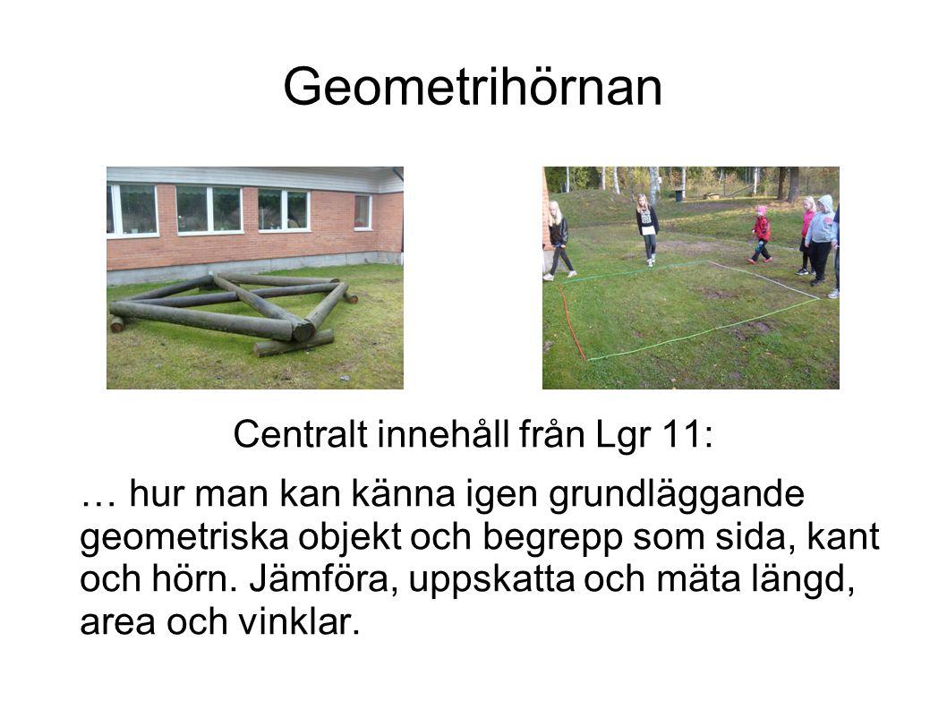 Centralt innehåll från Lgr 11: