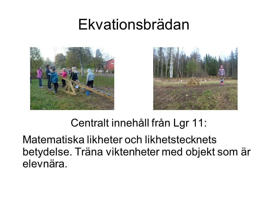 Ekvationsbrädan Centralt innehåll från Lgr 11: