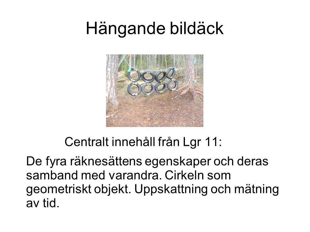 Hängande bildäck Centralt innehåll från Lgr 11: