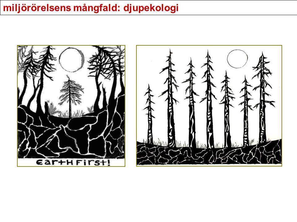 miljörörelsens mångfald: djupekologi