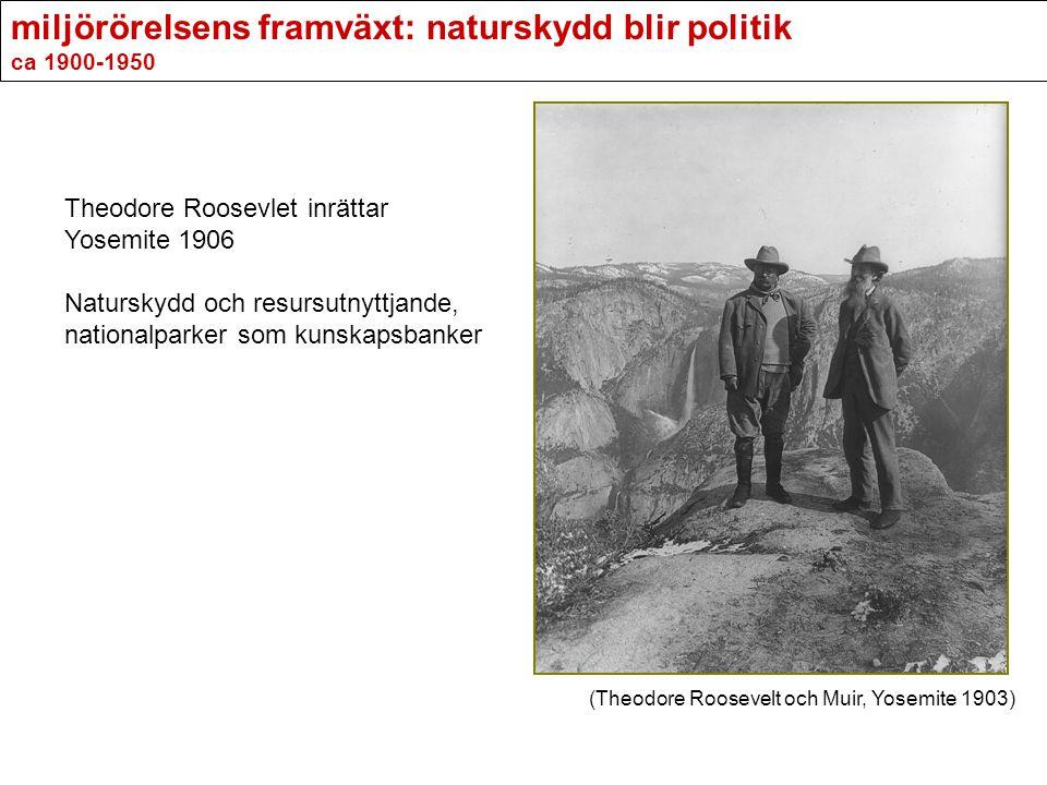 miljörörelsens framväxt: naturskydd blir politik ca 1900-1950