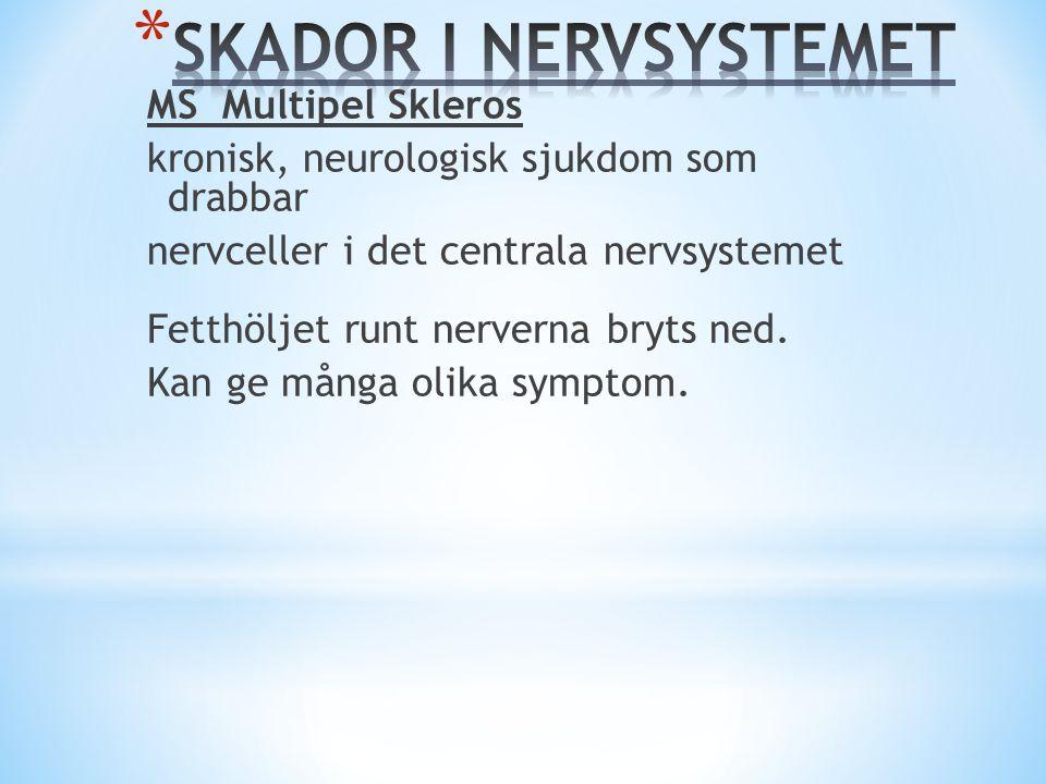 SKADOR I NERVSYSTEMET