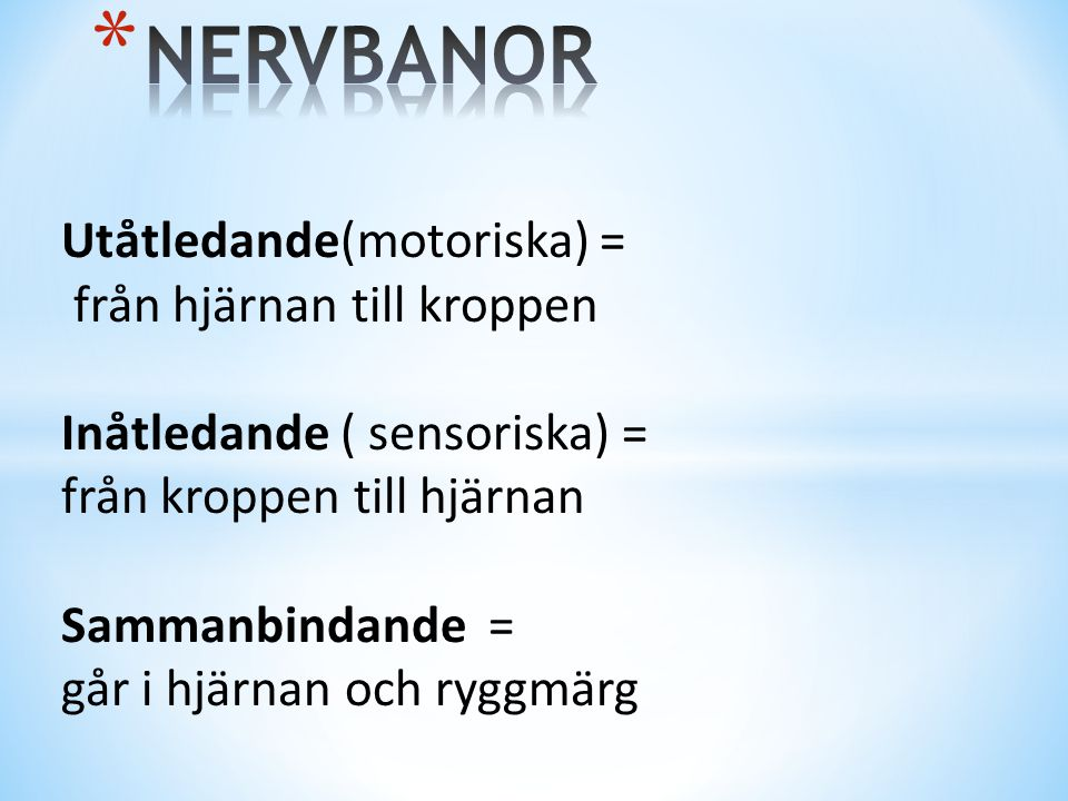 NERVBANOR Utåtledande(motoriska) = från hjärnan till kroppen
