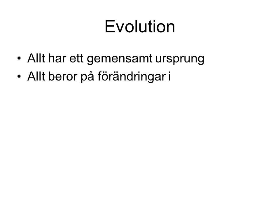 Evolution Allt har ett gemensamt ursprung Allt beror på förändringar i