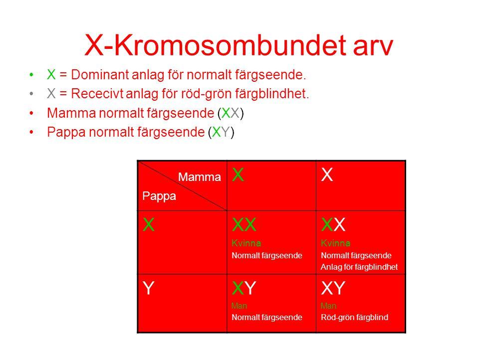 X-Kromosombundet arv Mamma X XX Y XY