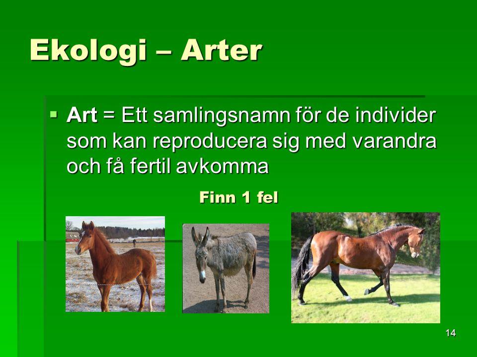 Ekologi – Arter Art = Ett samlingsnamn för de individer som kan reproducera sig med varandra och få fertil avkomma.