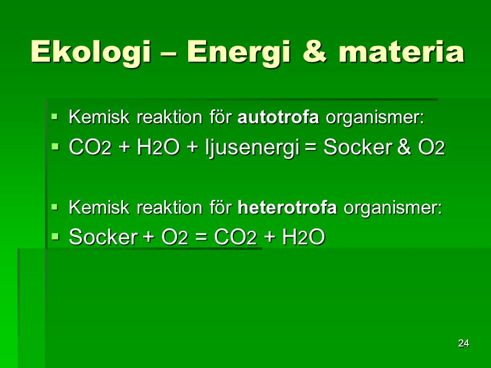Ekologi – Energi & materia