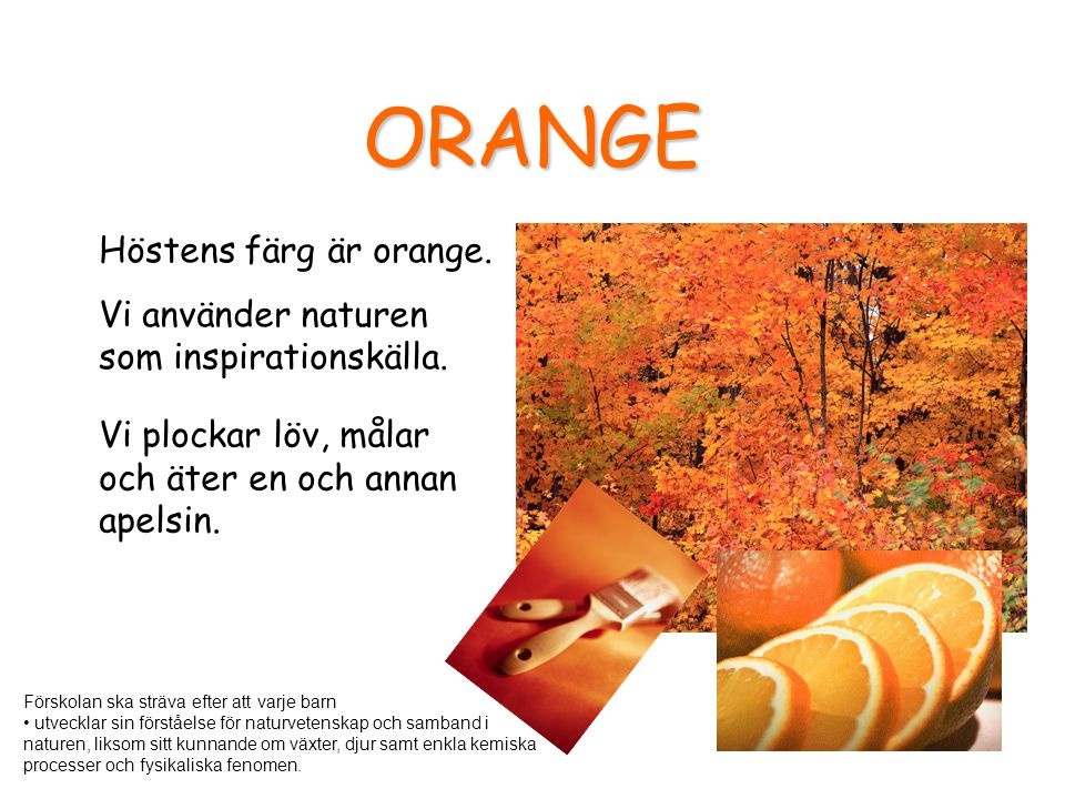 ORANGE Höstens färg är orange.