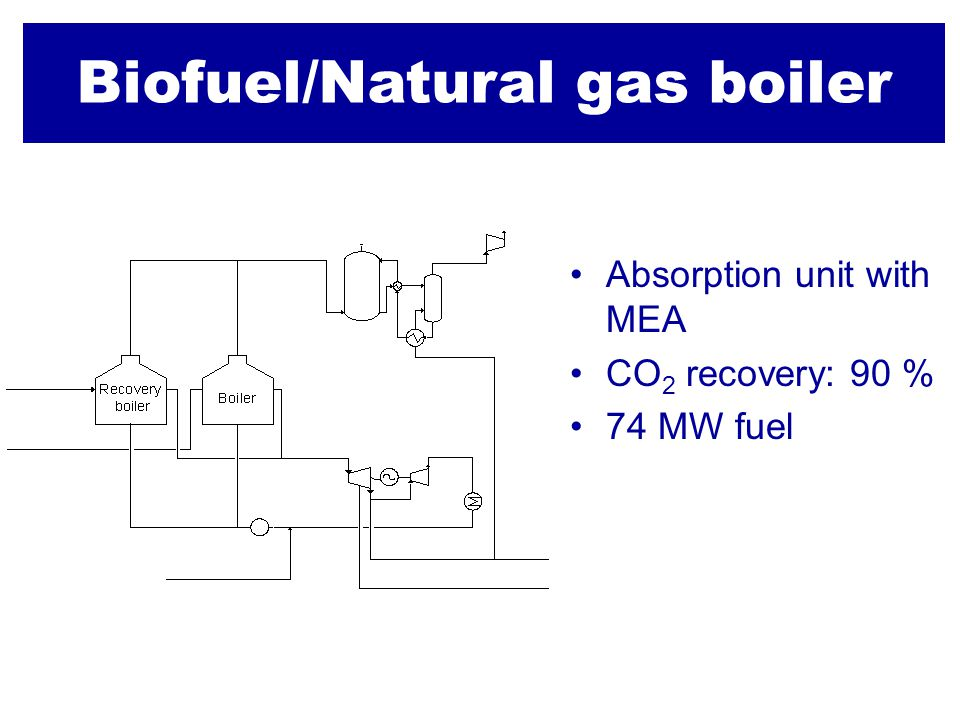 Biofuel/Natural gas boiler