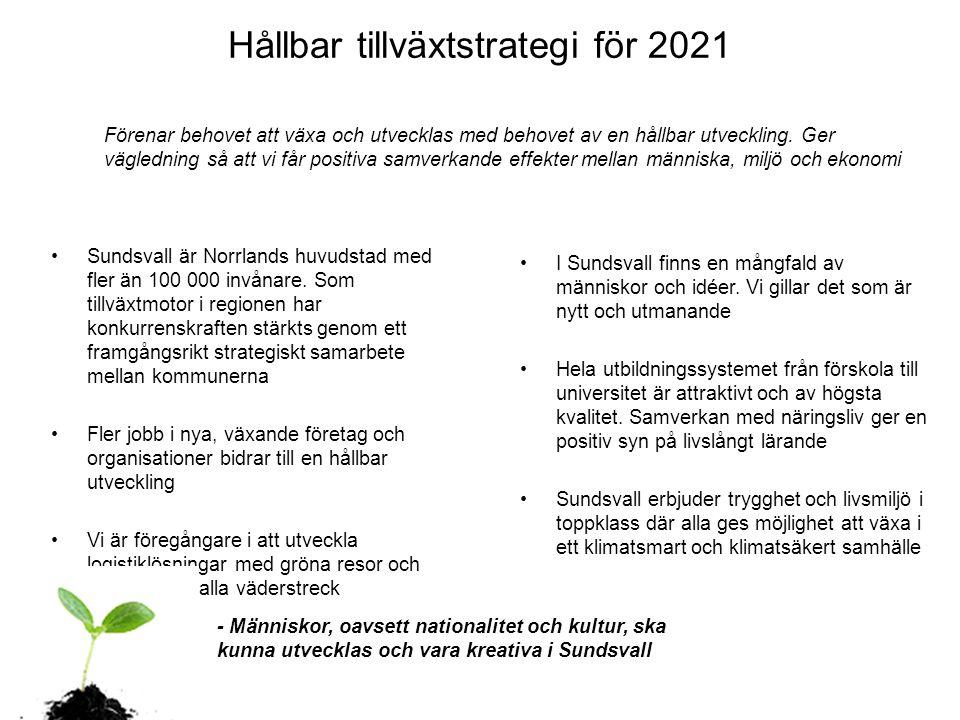 Hållbar tillväxtstrategi för 2021