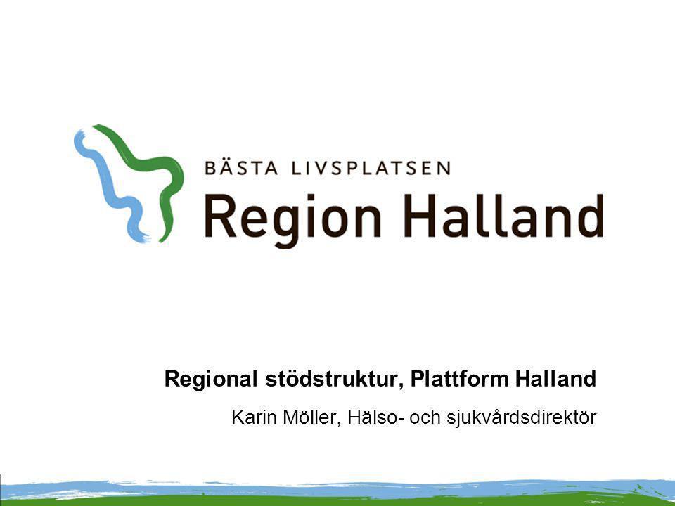 Regional stödstruktur, Plattform Halland