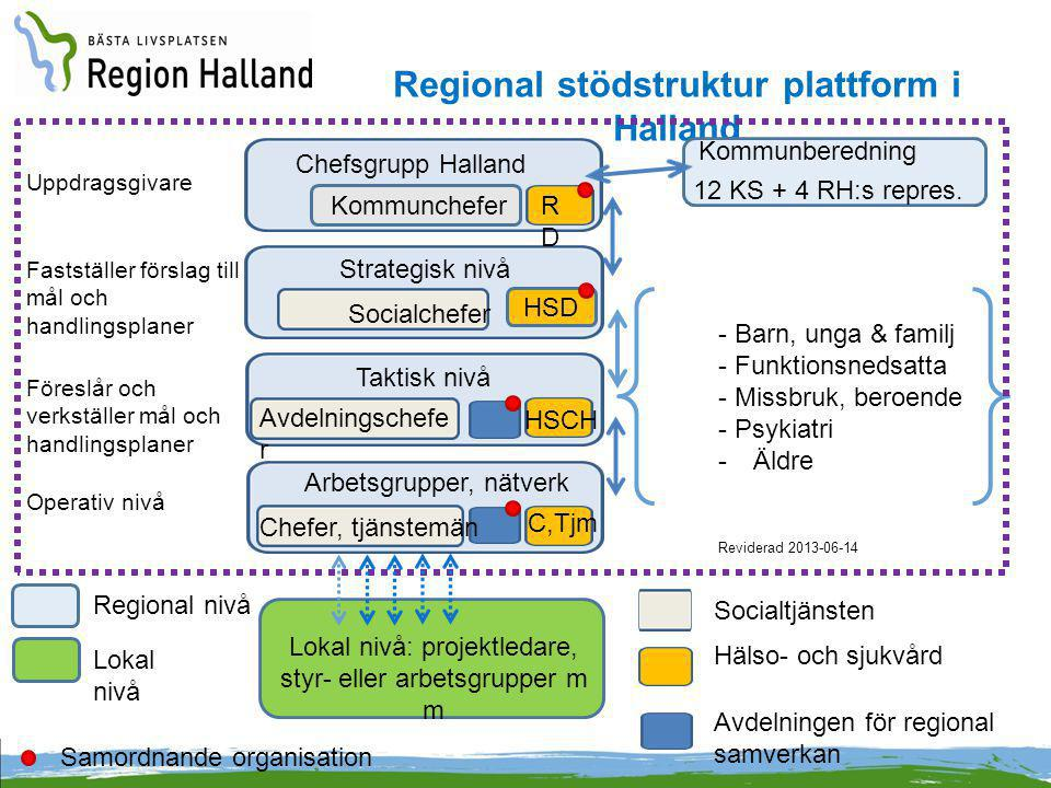 Regional stödstruktur plattform i Halland
