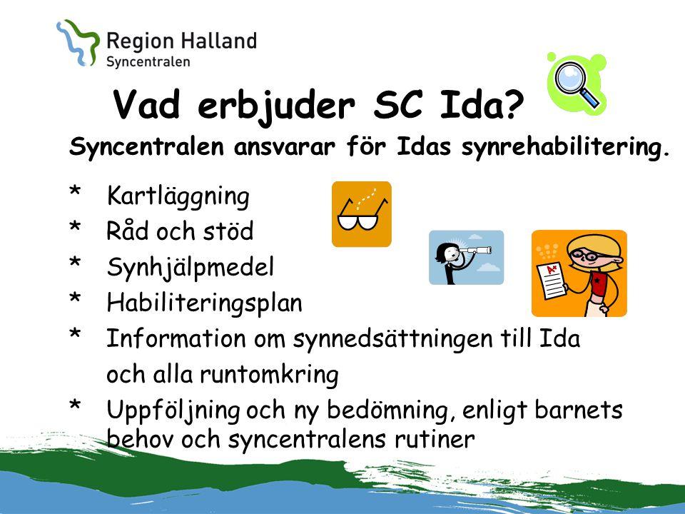 Vad erbjuder SC Ida Syncentralen ansvarar för Idas synrehabilitering.