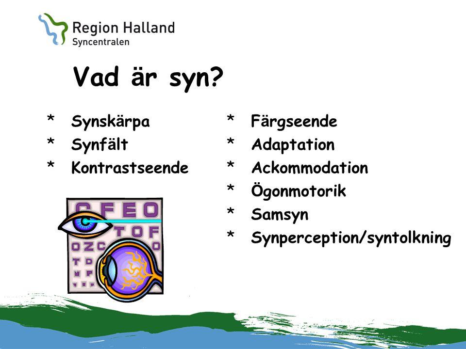 Vad är syn Synskärpa Synfält Kontrastseende Färgseende Adaptation