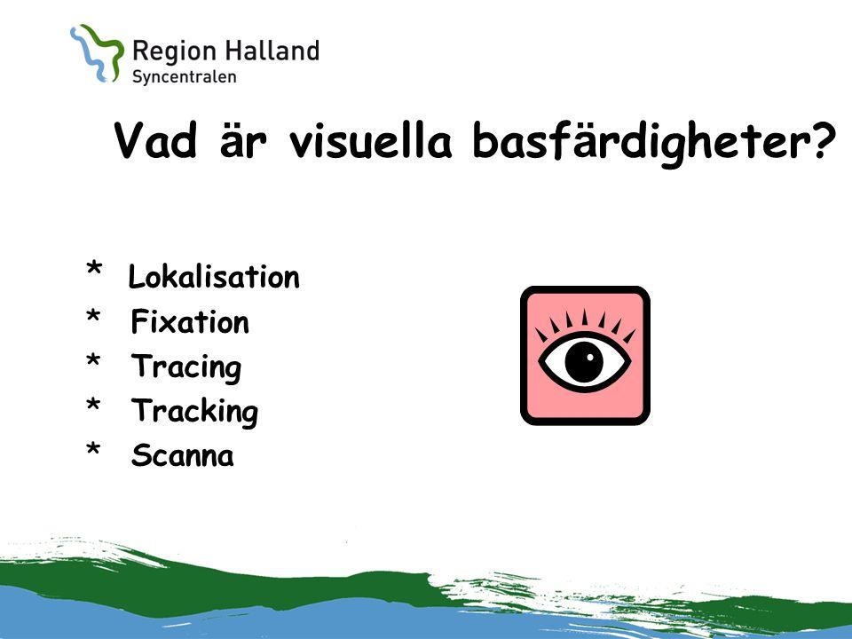 Vad är visuella basfärdigheter