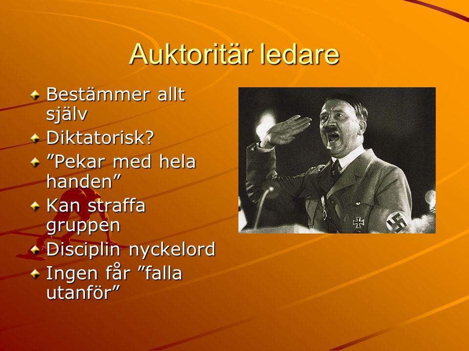 Auktoritär ledare Bestämmer allt själv Diktatorisk