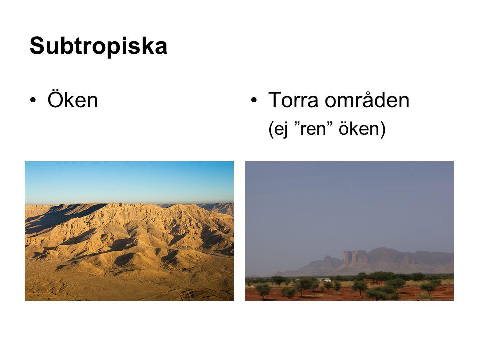 Subtropiska Öken Torra områden (ej ren öken)