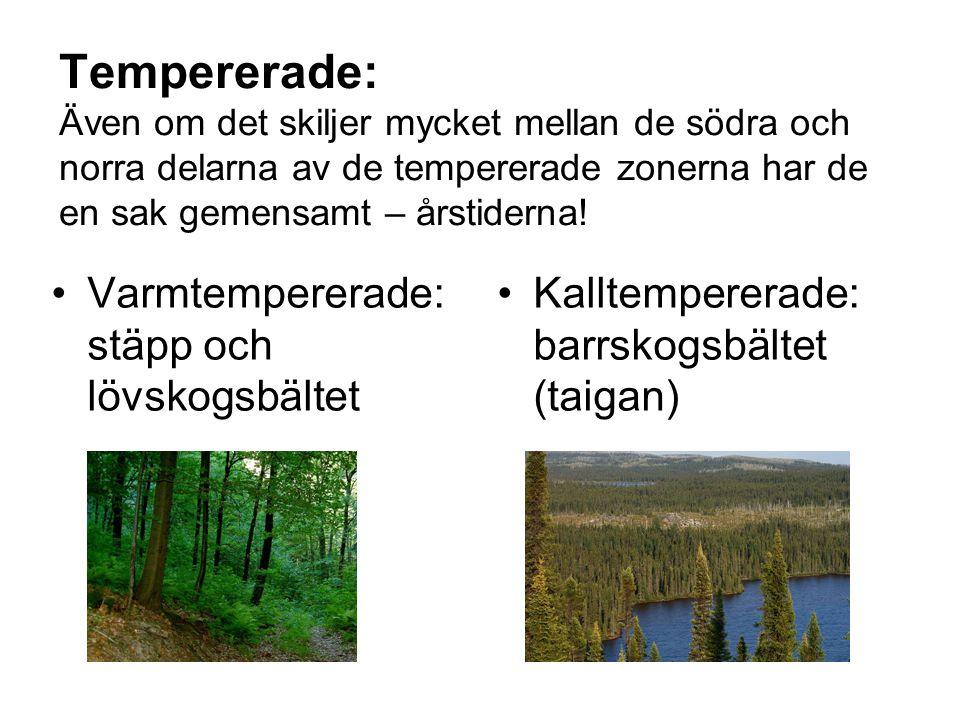 Tempererade: Även om det skiljer mycket mellan de södra och norra delarna av de tempererade zonerna har de en sak gemensamt – årstiderna!