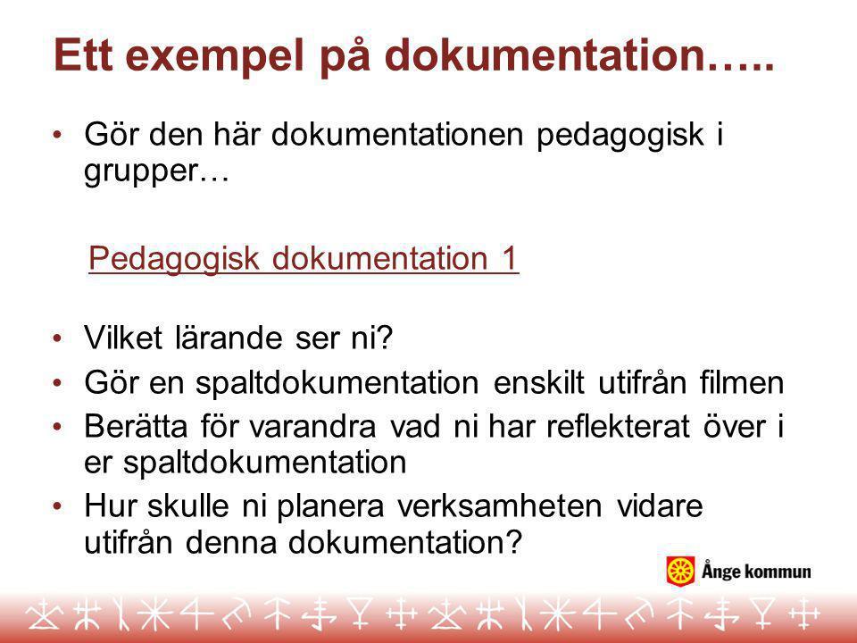 Ett exempel på dokumentation…..