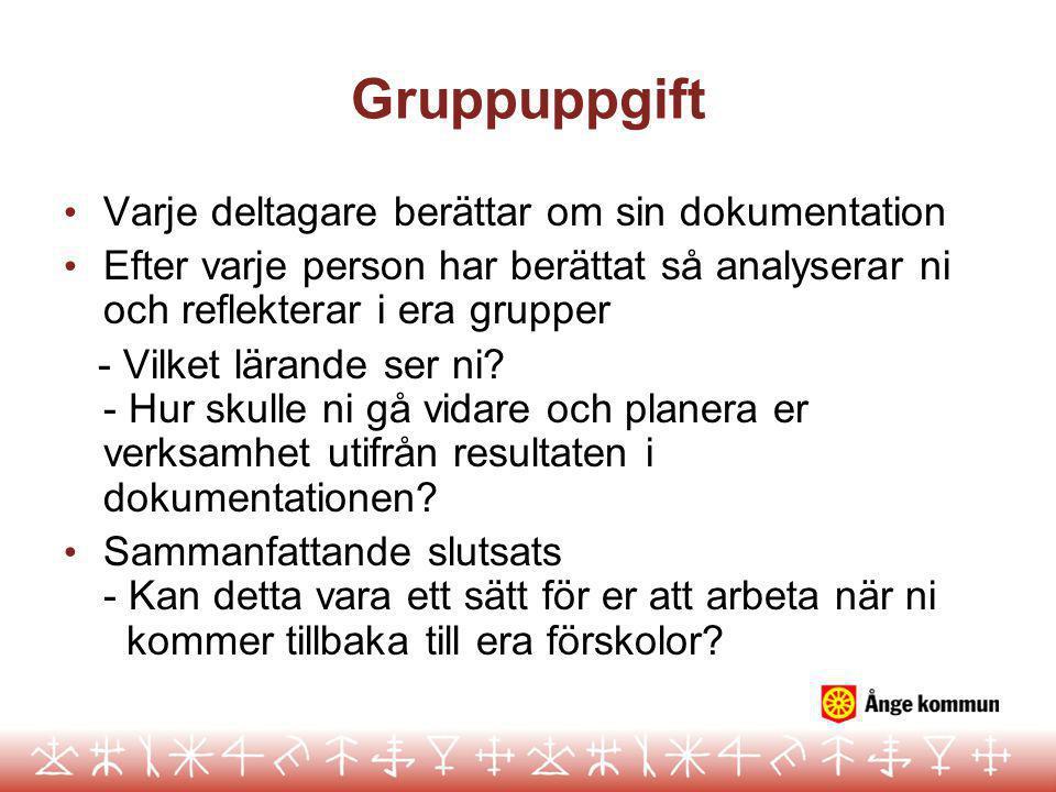 Gruppuppgift Varje deltagare berättar om sin dokumentation