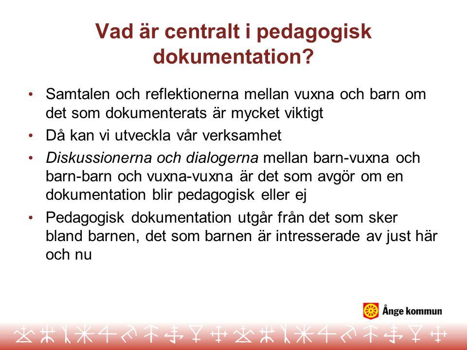 Vad är centralt i pedagogisk dokumentation