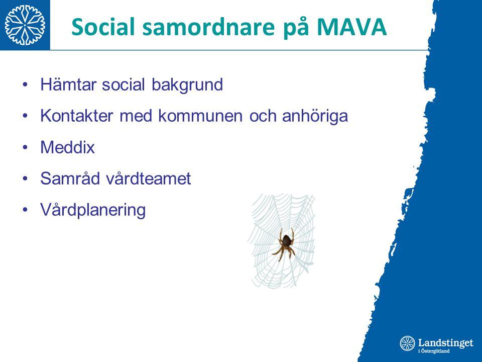 Social samordnare på MAVA